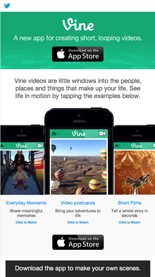 Vine Newsletter  Email Gallery 1